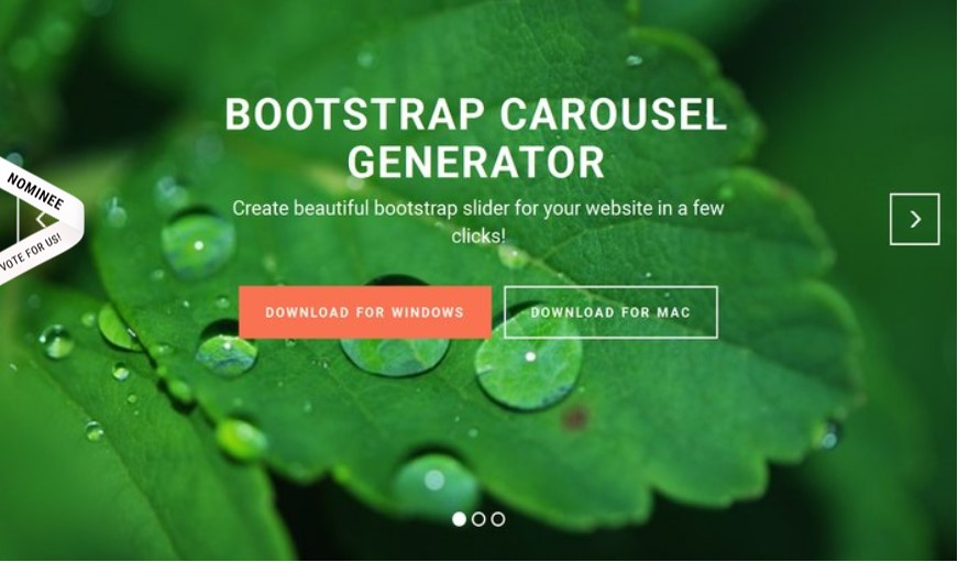 Bootstrap Carousel